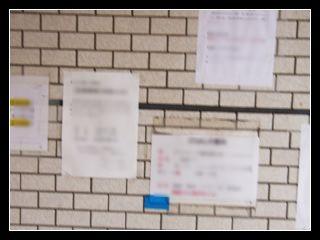 壁に貼られた掲示物